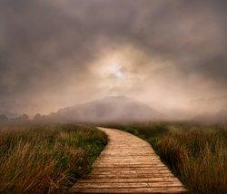 Path to Pooley Bridge Cumbria