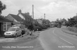 Cockadilly, nr Nympsfield, Gloucestershire 2013