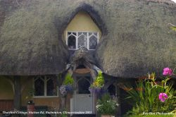 Thatched Cottage, Badminton, Gloucestershire 2011