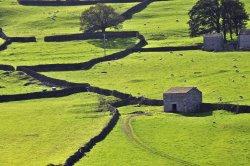 Swaledale, North Yorkshire