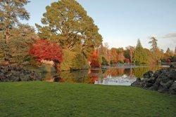 Sheffield Park Garden, Uckfield