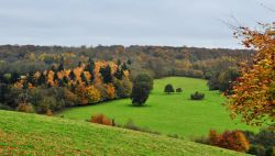 Surrey Hills from Polesden Lacey