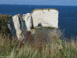 A view of Old Harry Rocks in Purbeck, Dorset