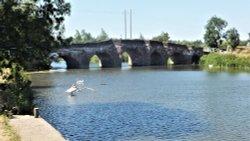 Eckington River Bridge