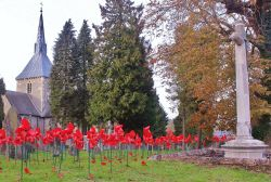 Poppies and St Helens Church