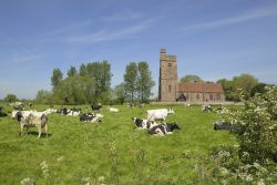 St Peter's Church, Stoke on Tern, Shropshire