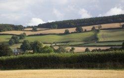 Countryside around Carhampton
