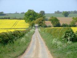 Near Hales Green