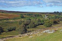 Hutton-le-Hole, Spaunton Moor