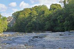 Aysgarth Falls - river Ure Wallpaper