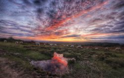 SUNSET FROM ASHDOWN FOREST
