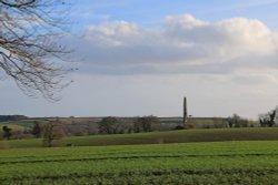Bicton Obelisk