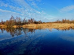 Old Moor Nature Reserve, Wombwell