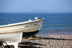 Budleigh gulls and boat