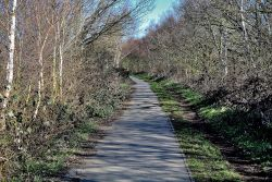 Trans Pennine Trail, Cudworth