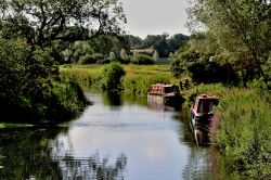 Chelmer and Blackwater Navigation Canal near Maldon, Essex