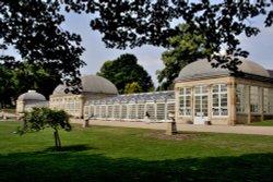 Pavilion Botanical Gardens, Sheffield