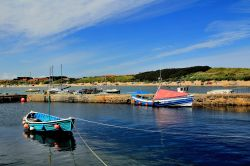 The Harbour, Beadnell