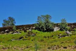 Bradfield Moors
