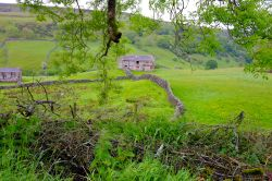 Beautiful countryside on Swaledale with its amazing stone walls and rural hedgrows
