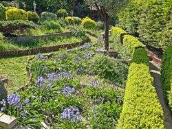 Under isolation with just my garden