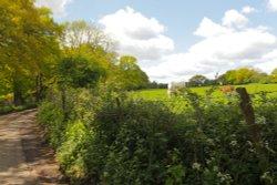 Rural Kentish Lane