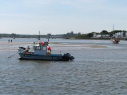 A view across Christchurch harbour in May