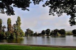 Lake in Pontefract Park