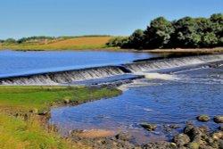 River Coquet, Warkworth