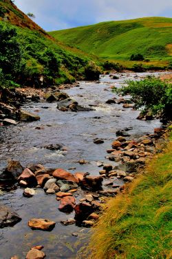 River Breamish, Ingram