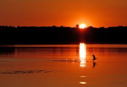 Sunset over Bewl Water, near Wadhurst, East Sussex