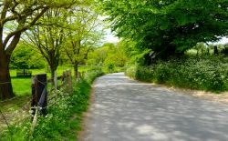 Kent country lane