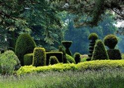 Topiary, Brodsworth Hall