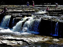Lower Force, Aysgarth Falls Wallpaper