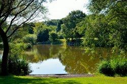 Dearne Valley Park, Barnsley
