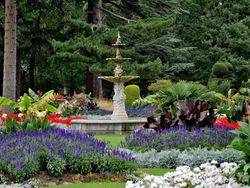 Gardens at Brodsworth Hall