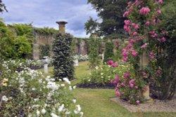 Hever Castle Rose Garden