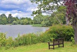 Lake Walk, Hever Castle