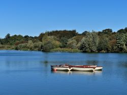 Lake at Hatfield Forest near Takeley
