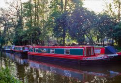 Barges moored on the Wey Navigation at Farncombe, near Godalming