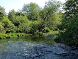 River Dearne, Cudworth