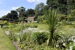 Hoveton Hall Walled Garden