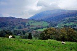 Loughrigg Fell, Ambleside