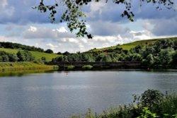 Ulley Reservoir