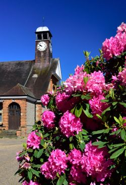 Spring View of Whiteley Village Hall