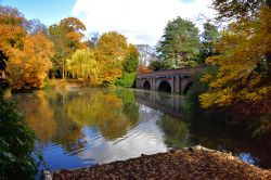 Autumn View of the lake and bridge