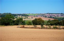 View Towards Birdwell from Rockley Lane