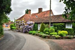 The Old Forge at East Clandon, Replete with Wisteria