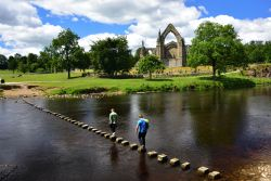 Classic View of Bolton Abbey and the Stepping Stones