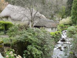 Cottage in Buckland in the Moor, Devon